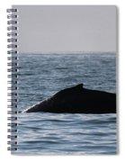 Whale Fin Spiral Notebook