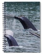 Whale Of Tales Spiral Notebook