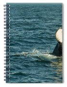 Whale Spiral Notebook