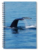 Whales Tale Spiral Notebook