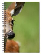 What A Face 1 Spiral Notebook