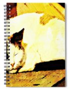 What Do Cats Dream Of Spiral Notebook