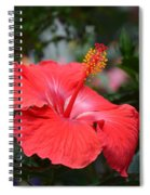 What Dreams May Come Spiral Notebook