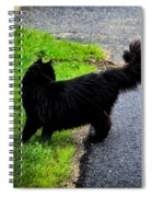 What Was That? Spiral Notebook