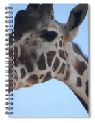Whatcha Looking At? Spiral Notebook