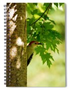 Whats A Woodpecker To Do Spiral Notebook
