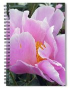 What's In A Name - Bowl Of Beauty Peony Spiral Notebook