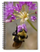What's The Buzz Spiral Notebook