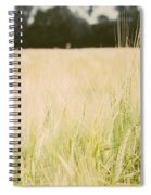 Wheat Field Closeup Spiral Notebook