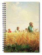 Wheat Field In The Summer Spiral Notebook