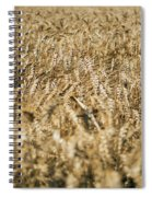 Wheat In The Wind Spiral Notebook