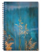 Wheat On Blue 1 Spiral Notebook