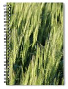 Wheat Spiral Notebook