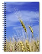 Wheat Trio Spiral Notebook
