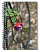 Wheel And Fushia Blossom Spiral Notebook
