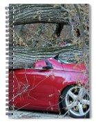 When A Tree Falls Spiral Notebook