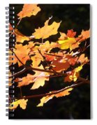 When Colors Think Outloud Spiral Notebook