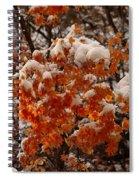 When Fall Meets Winter Spiral Notebook