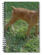 When I Was Just A Pup Spiral Notebook