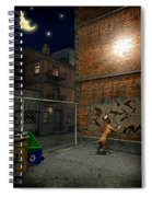 When Stars Fall In The City Spiral Notebook
