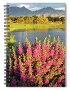 When The Rains Come In The Desert So Do The Blooms Spiral Notebook