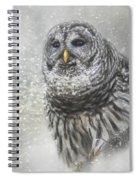 When Winter Calls Owl Art Spiral Notebook
