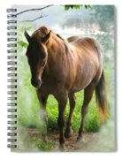 When You Dream Of Horses Spiral Notebook