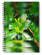 When You're Thirsty... Drink Spiral Notebook