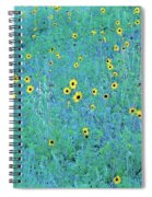 Where The Flowers Bloom Spiral Notebook