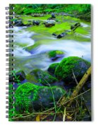 Where The Golden Waters Flow Spiral Notebook