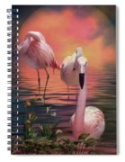 Where The Wild Flamingo Grow Spiral Notebook