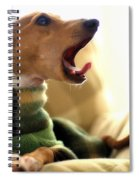 Where's My Coffee Spiral Notebook