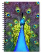 Whimsical Peacock Spiral Notebook