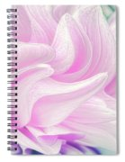 Whimsy Girl Spiral Notebook