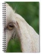 Whisper It In My Ear Spiral Notebook