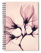Whisper Magnolia Spiral Notebook