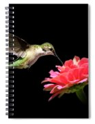 Whispering Hummingbird Spiral Notebook