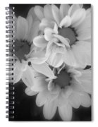 Whispers Of Beauty Spiral Notebook