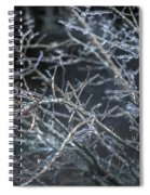 Whispers Of Winter Spiral Notebook