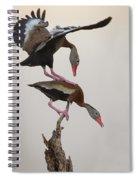 Whistling Duck Ballet  Spiral Notebook