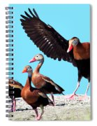Whistling Ducks Spiral Notebook