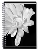 White And Black Flower Painting Spiral Notebook