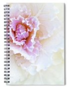 White And Pink Ornamental Kale Spiral Notebook