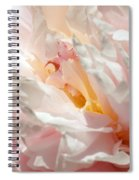 White And Pink Peony 3 Spiral Notebook