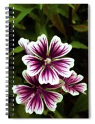 White And Purple Spiral Notebook