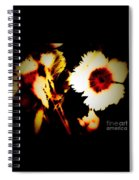 White And Red Dianthus Spiral Notebook