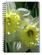 White And Yellow Daffodil 8887 Idp_2 Spiral Notebook