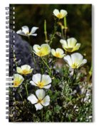 White And Yellow Poppies 1 Spiral Notebook