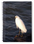 White As Snow Spiral Notebook