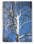 White Bark Spiral Notebook